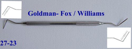 Messsonde.  Goldman- Fox / Williams